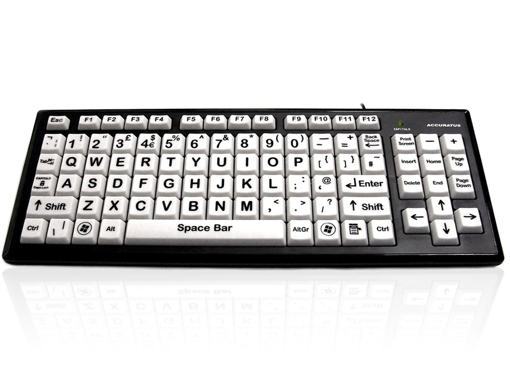 Large Key Black on White Keyboard with 2 Port USB Hub